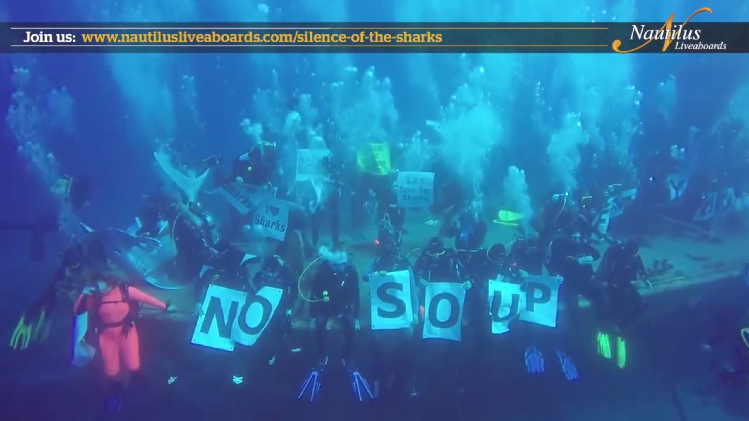 Nautilus Shouts out for the Sharks!!!