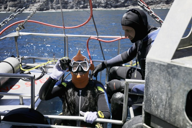 divers preparing to enter shark cage