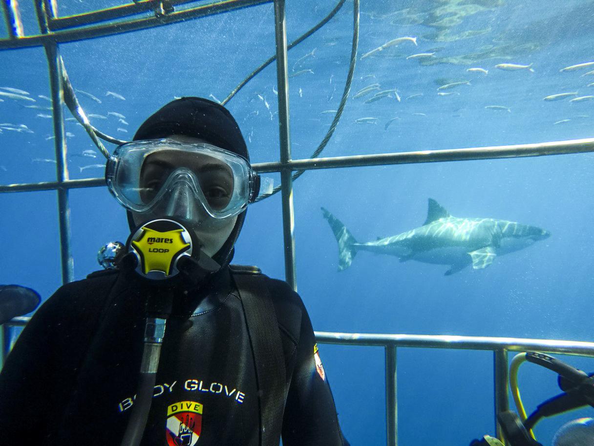 Shark Cage Selfie, Photo by Miguel Guzman