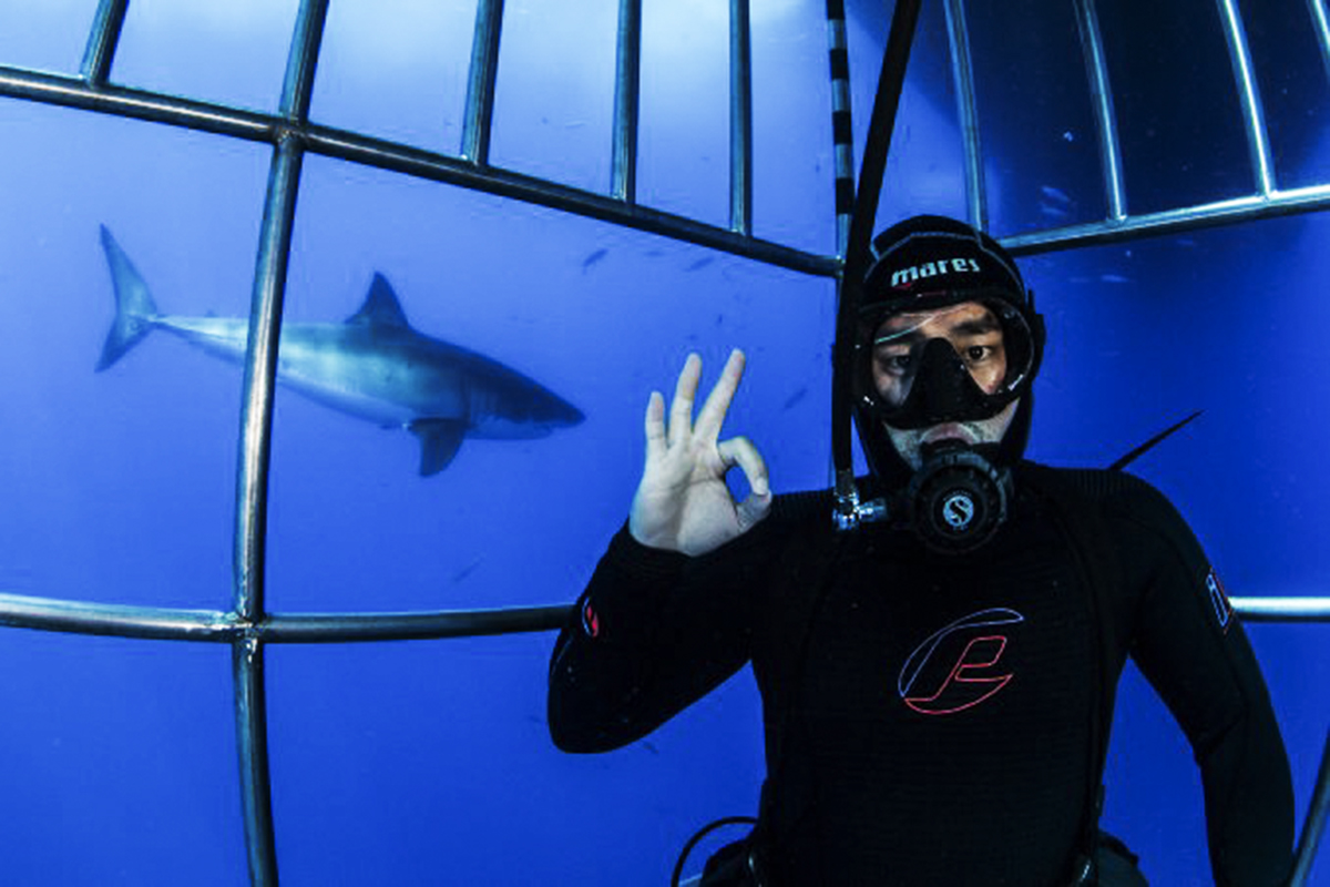 Helping Guests with Shark Selfies, Photo by DM Thiago