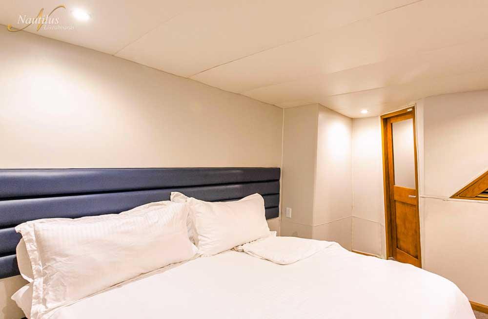 Gallant Lady Premium suite