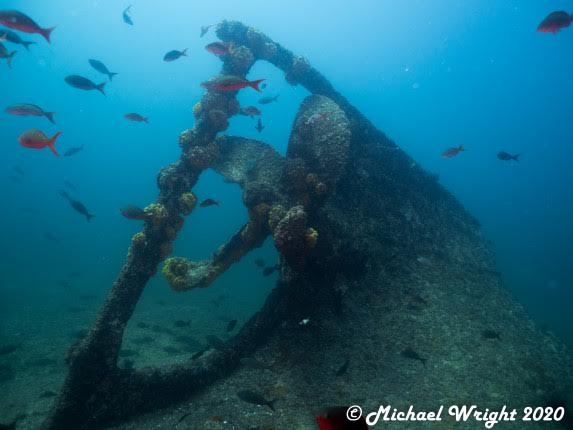 Sea of Cortez , La Reina, Ship Wreck