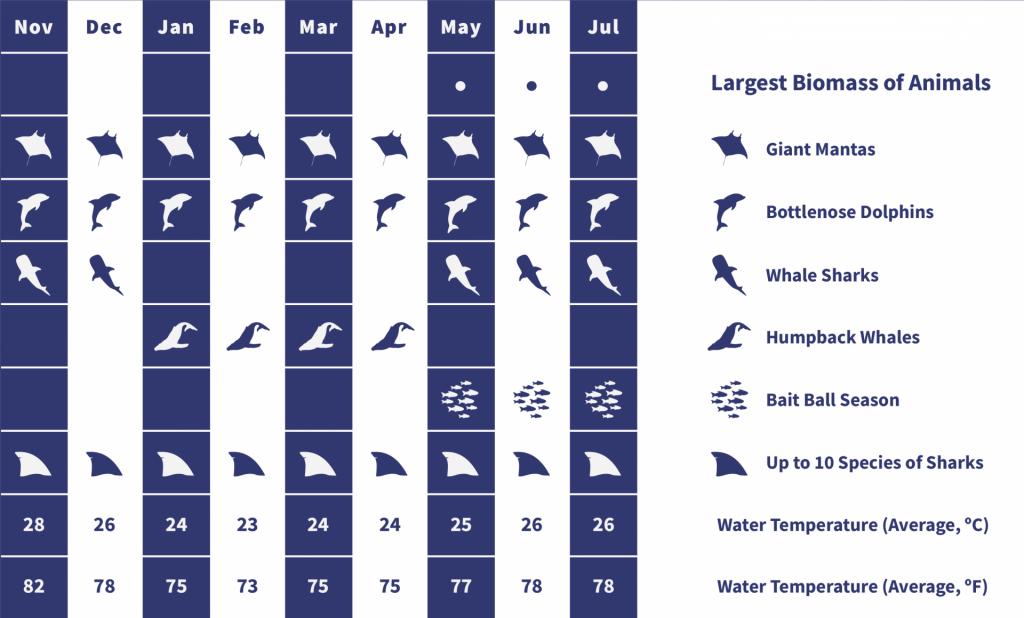 Socorro Wildlife Calendar