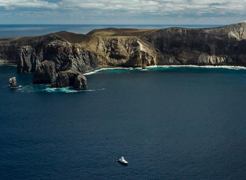 Remote diving in isla socorro mexico
