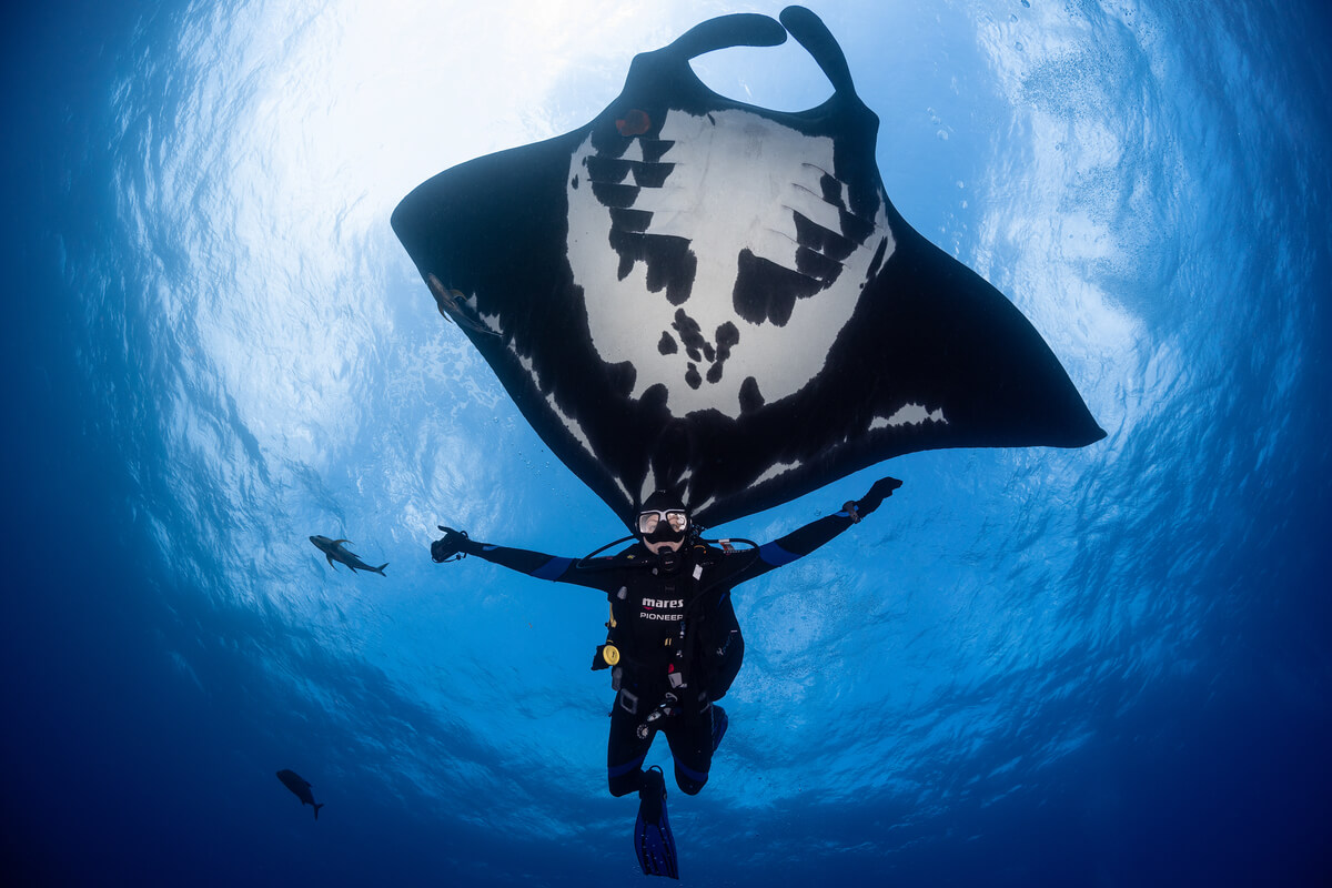 We Will Be Arriving at Diving Destinations That Many Divers Only Dream Of